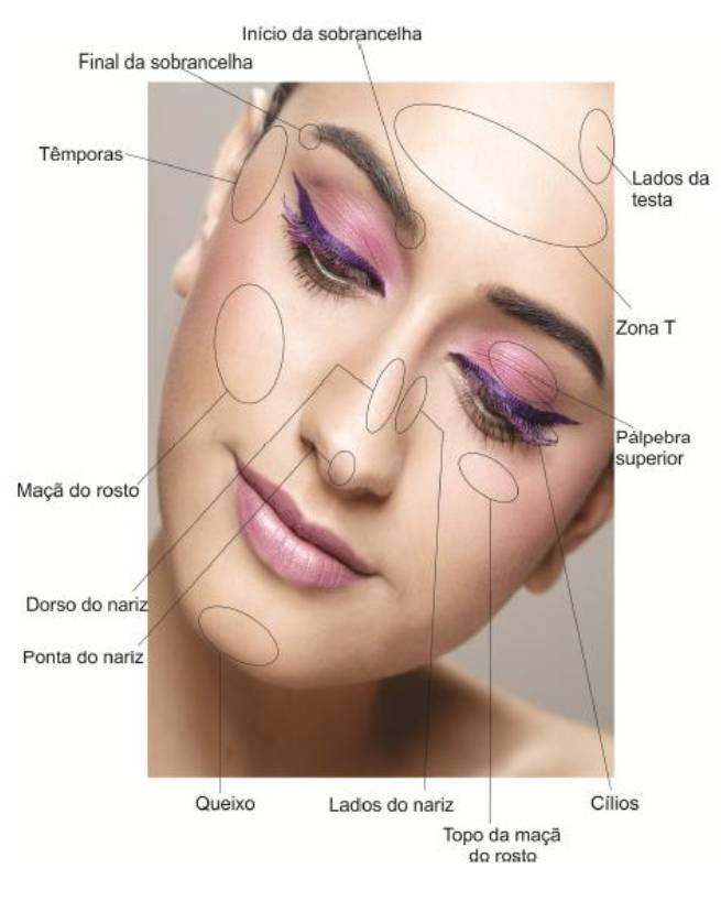 Figura mostrando as áreas do rosto