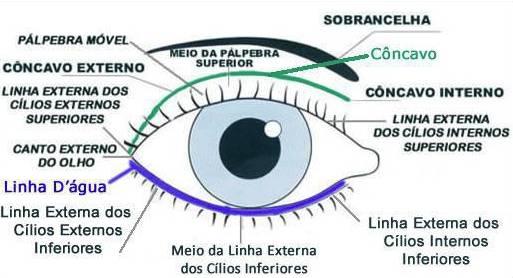 Foto mostrando as áreas do olho