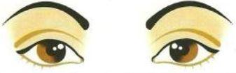 Figura mostrando sobrancelhas redondas